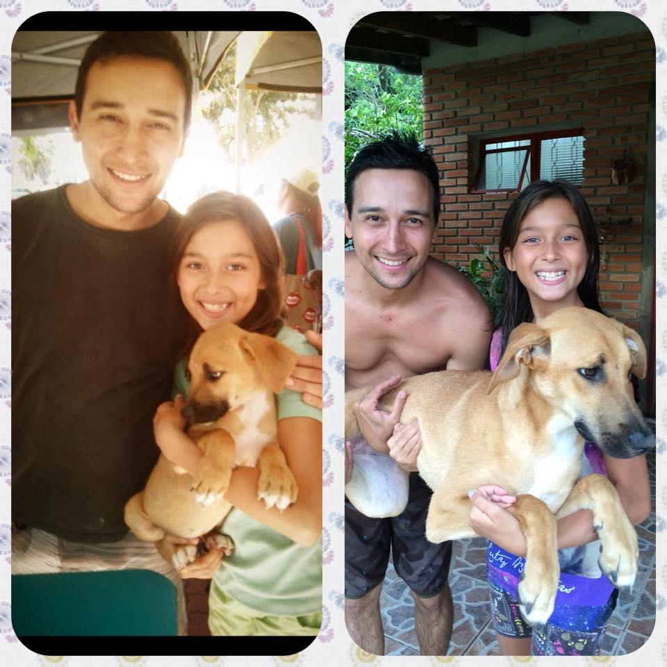 Foto enviada pela adotante da  Meg , a Isabelle: à esquerda no dia da adoção e à direita hoje em dia.