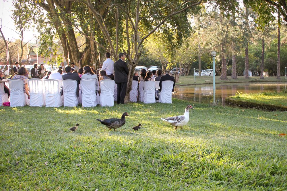 Uma tarde de inverno com um sol quente de verão, em clima de outono com cores de primavera na decoração, e com a presença de uma família de patinhos na cerimônia.