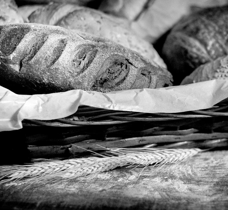 portfolio-gastronomia.jpg