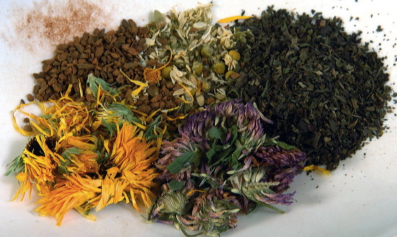 Some herbal allies. Clockwise from top left: cinnamon bark, chamomile flowers, peppermint leaf, red clover blossoms, calendula flowers.