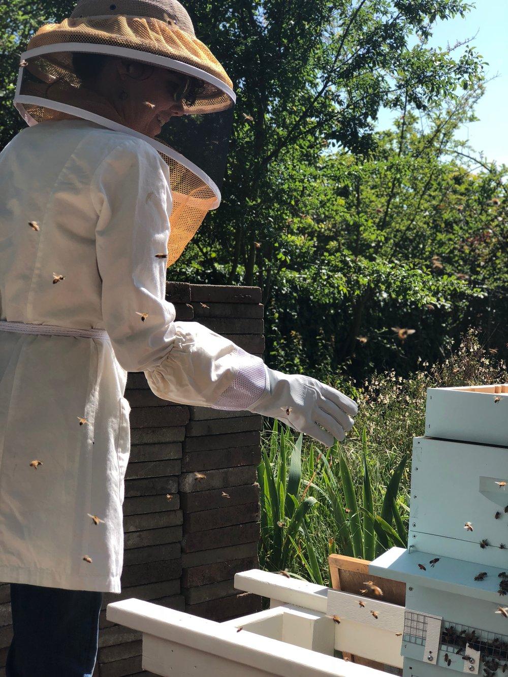 Amy Charnay beekeeping