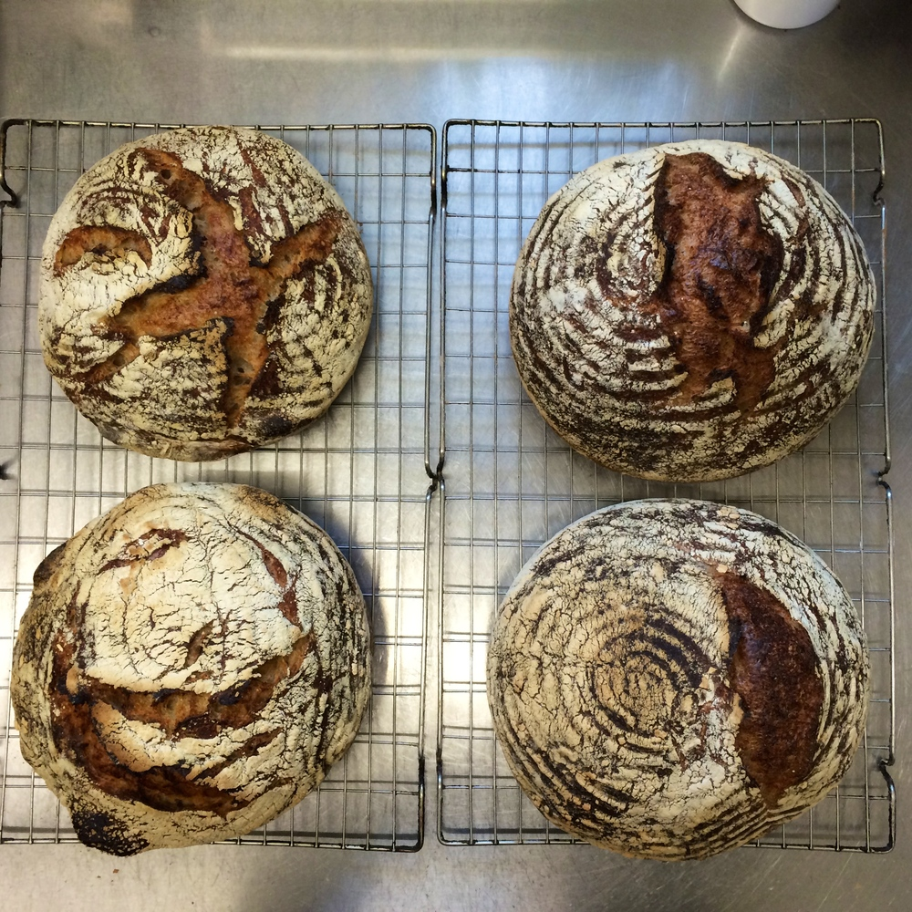 On the left are two pure sourdough loaves, made according to  Ken Forkish's  recipe and principles for Overnight Country Blonde.   Top right is an organic white loaf made with 80% Biga   Bottom right is a Pain du Campagne made with a combination of sourdough starter and organic yeast.