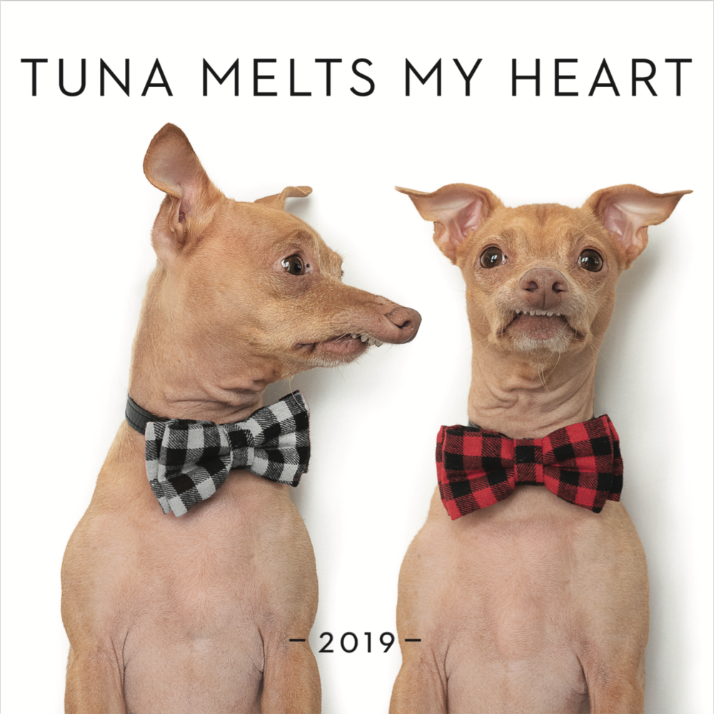 Tuna Melts My Heart Calendar 2019 With Pawdograph Tunameltsmyheart