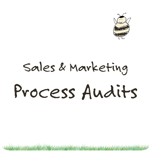Sales and Marketing Process Audits