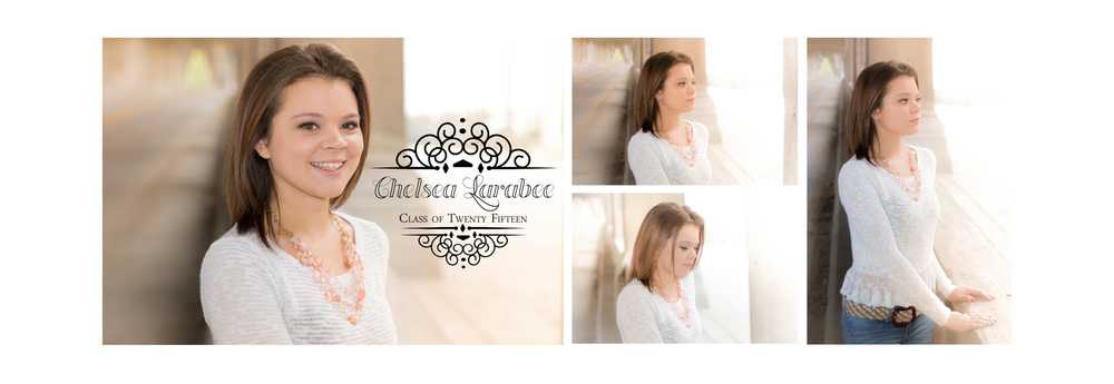 Chelsea Larabee Senior CatsEye Photography 2015 Banner 1.jpg
