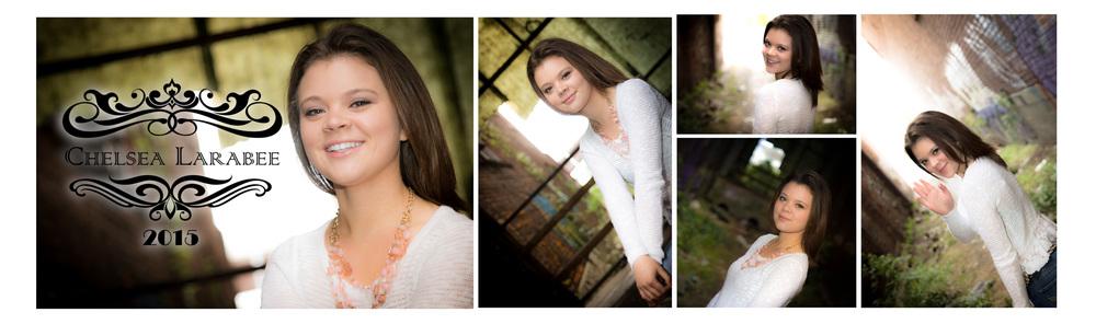 Chelsea Larabee Senior CatsEye Photography 2015 Banner 4.jpg