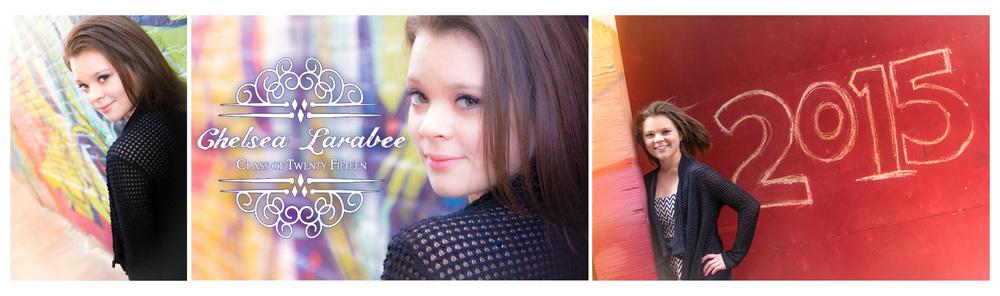Chelsea Larabee Senior CatsEye Photography 2015 Banner 6.jpg
