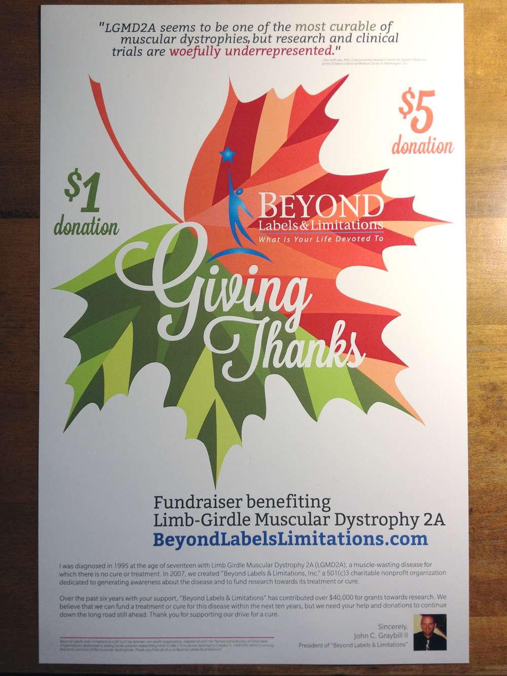 "11""x17"" Poster for Donation Leaves - Printed"