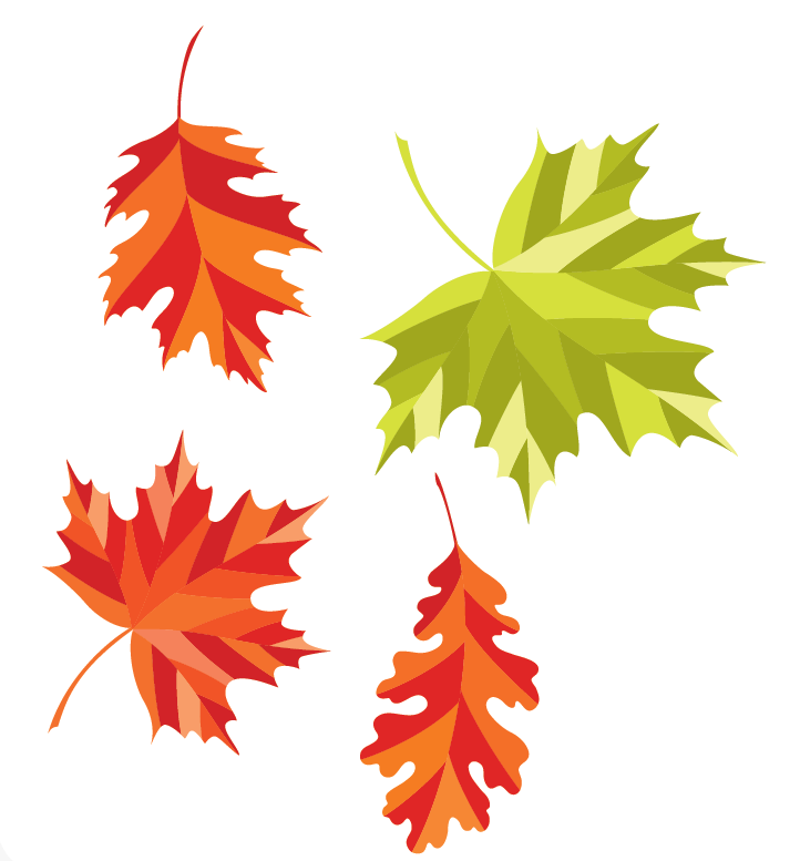 Leaves from vectorstock.com