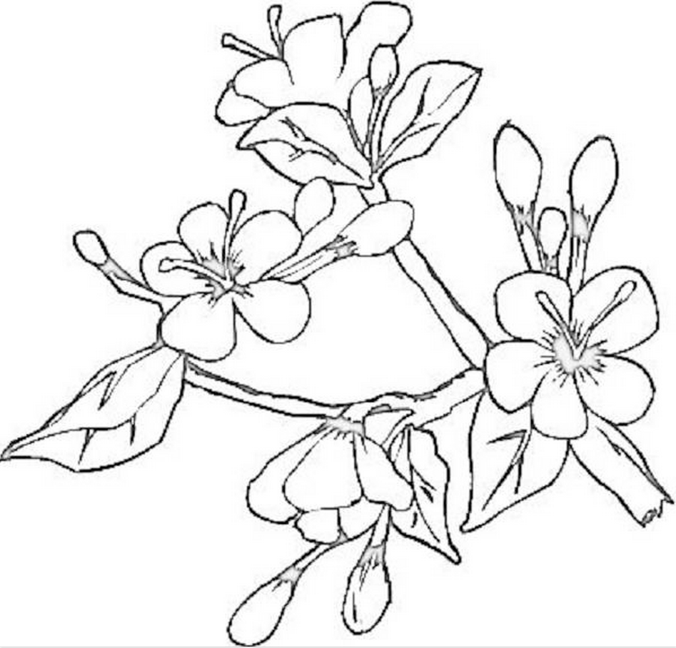 Japanese flower clip art used on the Art & Embellishment promotion materials.