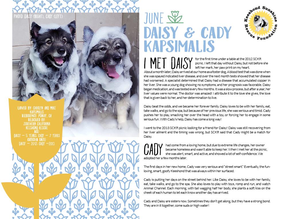 Calendar Example: 2017 June Calendar Page, featuring Daisy & Cady Kapsimalis