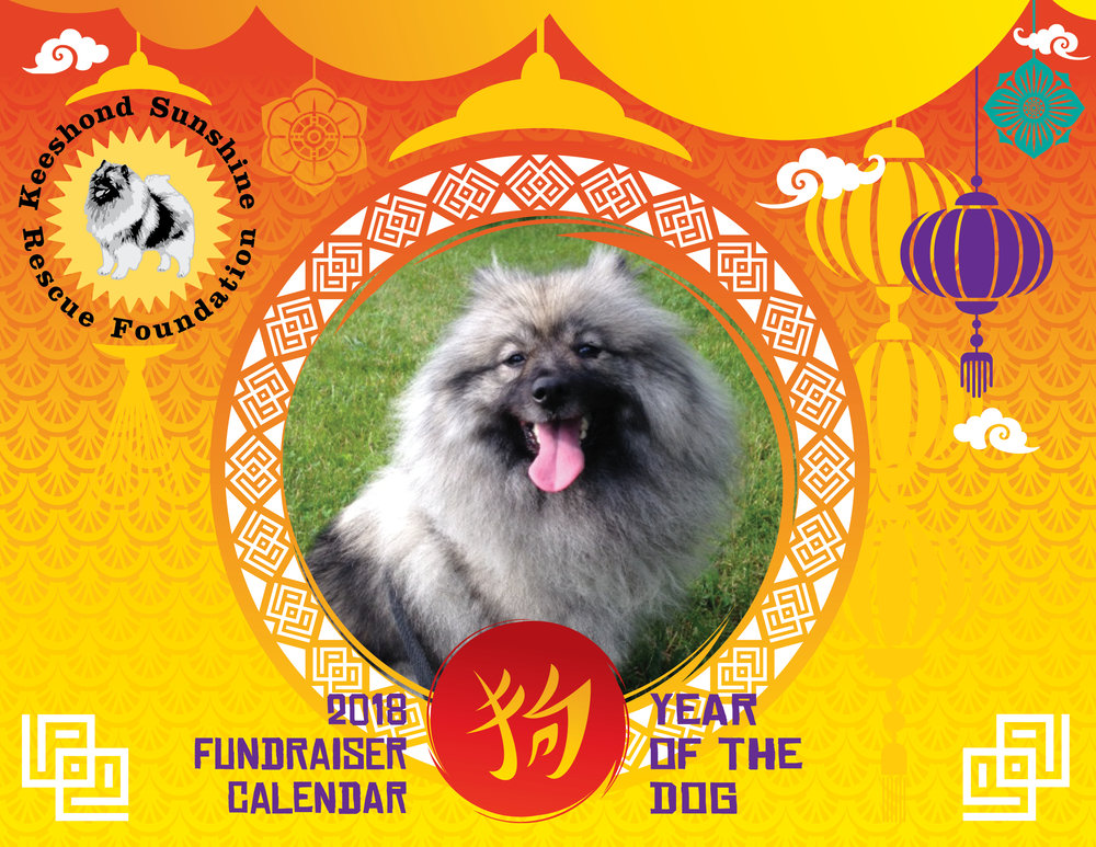 Our 2018 KSRF Calendar Cover to celebrate the Year of the Dog!