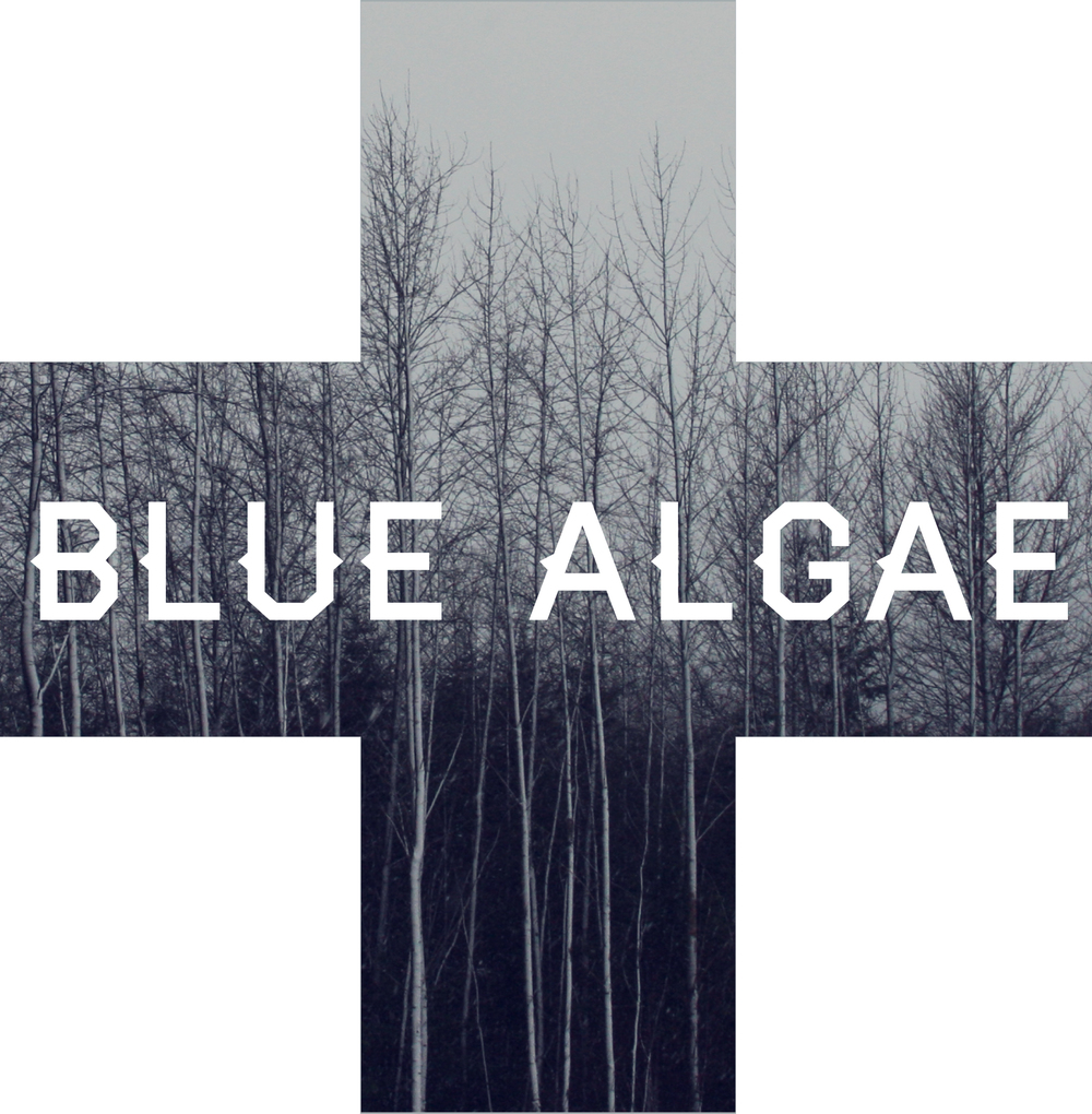 Blue Algae Creative