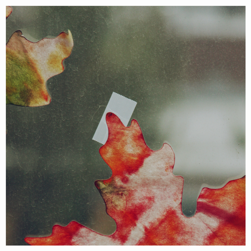simple joys leaves on a window.jpg
