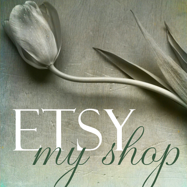 Etsy shop button2.jpg