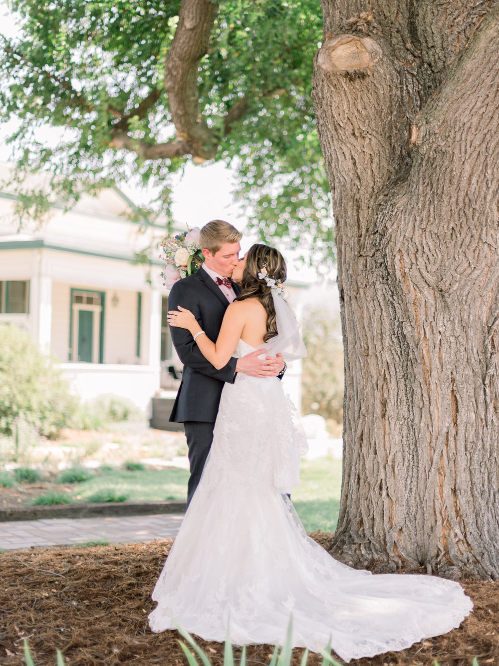 bride-and-groom-kissing-beneath-a-tree.jpg