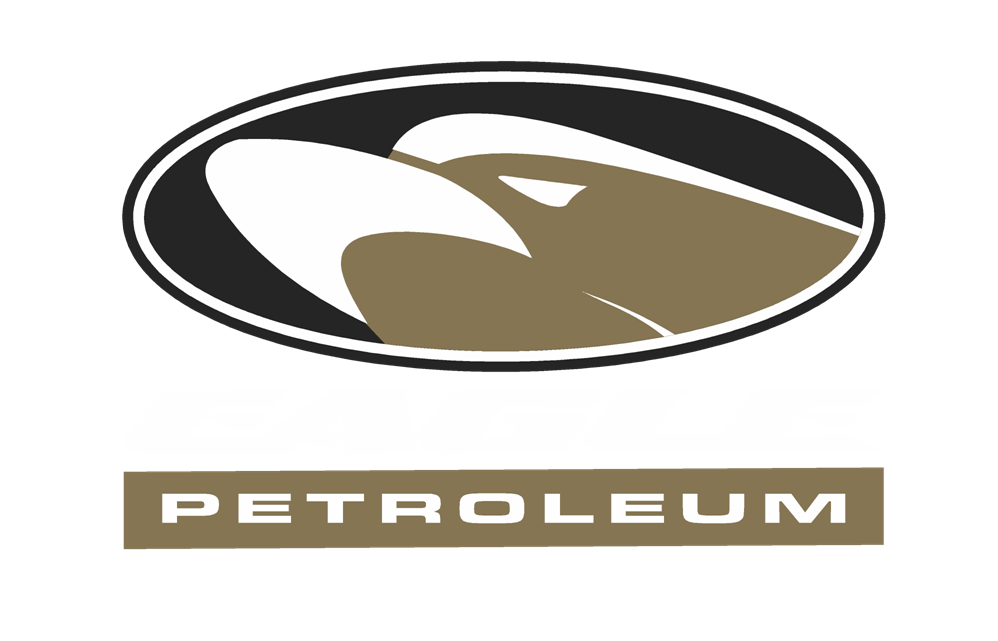 Eagle Petroleam.png