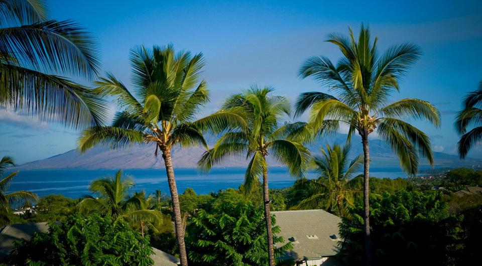 Hotel Wailea - Ocean View