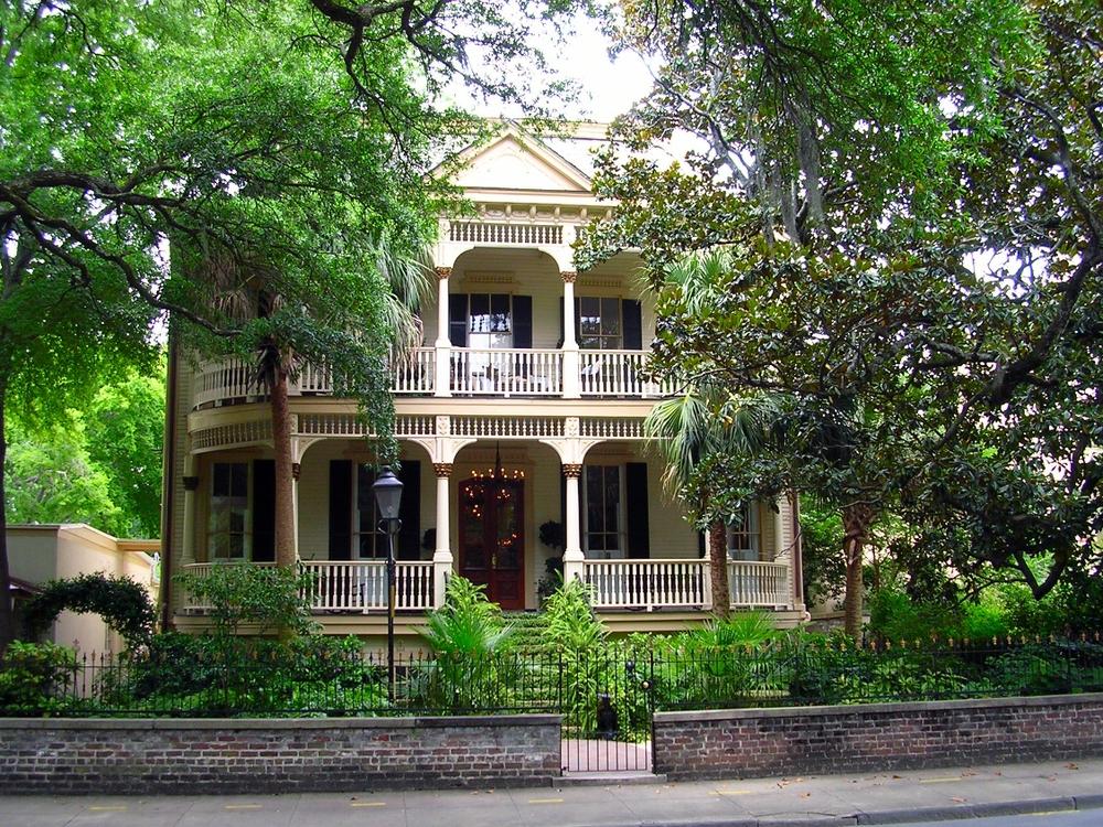 Savannah - taken by MDLorey