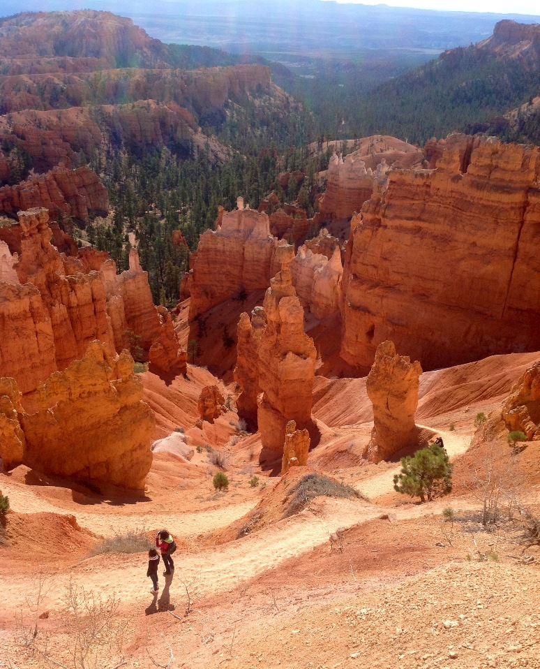 Bryce Canyon-client feedback.jpg