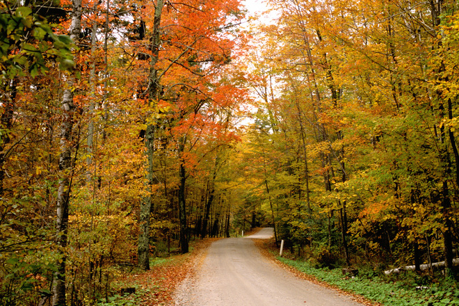fall-pic-vermont-country-road-1568190.jpg