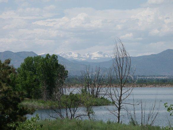 Rockies Denver Colorado