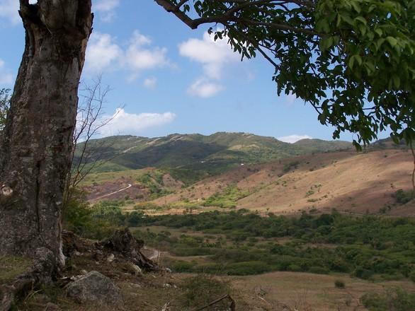 Antigua Countryside