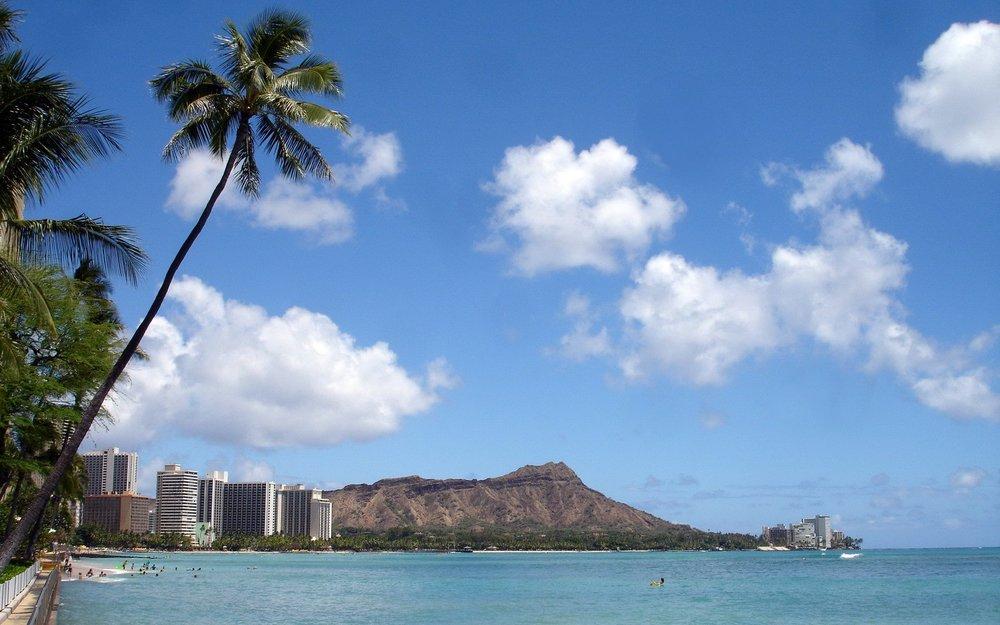 Waikiki Beach Oahu