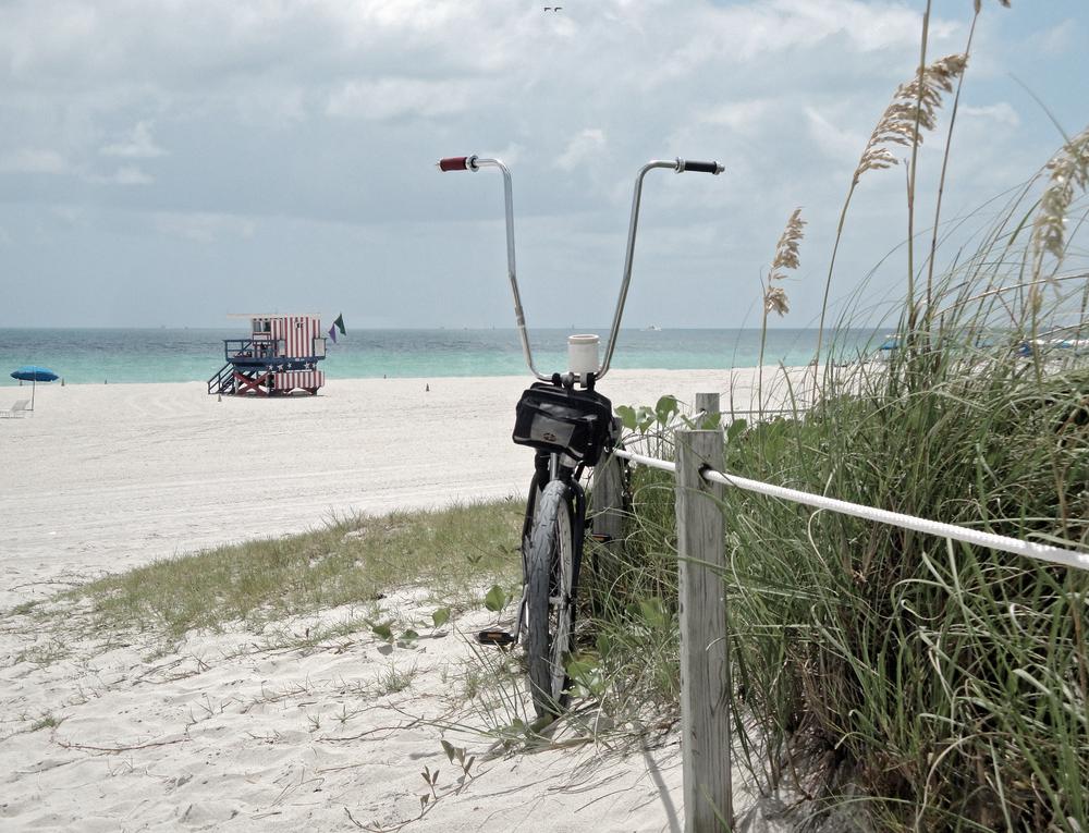 Florida - D.png