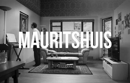 Mauritshuis.jpg