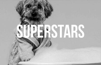 Superstars.jpg