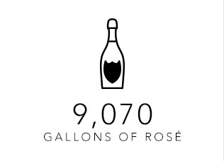 Gallons of Rose