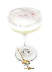 South America Pisco Sour