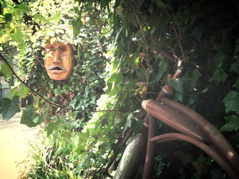 wise treeman