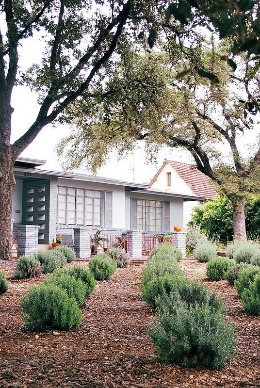A Lavender Yard.jpg