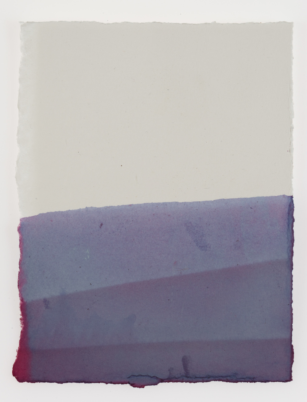 Cornelia white swann, madrugada, 2015. hibiscus on paper, 7 1/2 x 5 3/4 inches. documented february 2015.