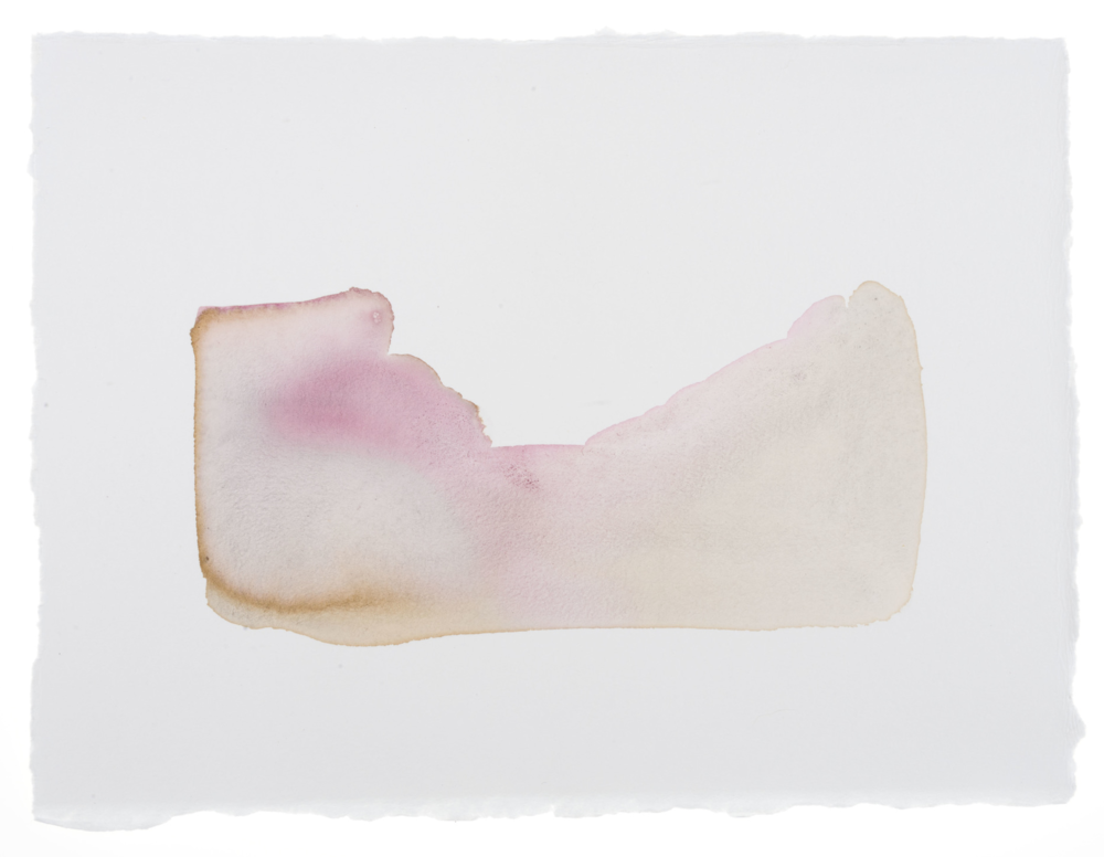 Cornelia White Swann, The Desert Calls her Name, 2016. Cochineal and marigold on watercolor paper, 11 1/2 x 17 inches. Documented January 2016.