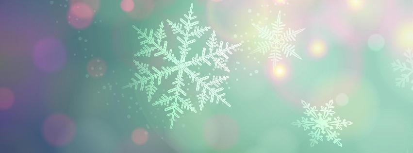 1391711199_graphic-snowflake_facebk.jpg
