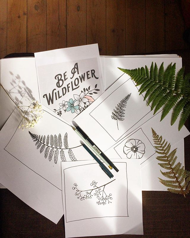 Happy Friday! Today I've found a quiet corner in my chaotic new home to draw some flowers and ferns which will hopefully be used in my packaging for my new range of pressed flower jewellery. Really hoping to get it out there before Christmas! . . . . . #wipsandblooms #imusthaveflowersalwaysandalways #flowerdrawing #botanicallinedrawing #packagingdesign