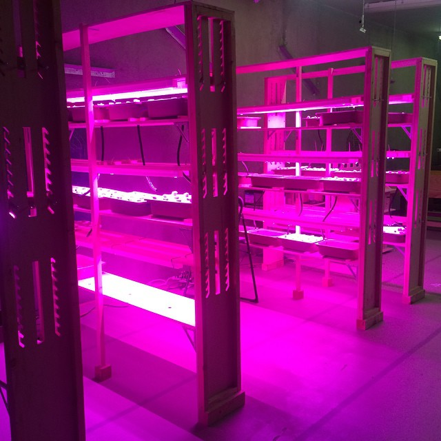 Can't wait to see this things in action next week! #urbanagriculture #hydroponics #verticalfarming #oakland @philipslight @hortamericas
