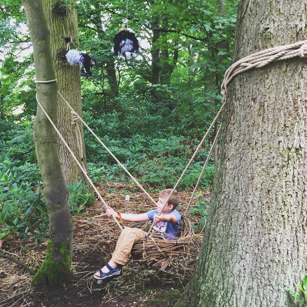 We love this nest swing set