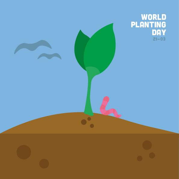 planting day.jpg