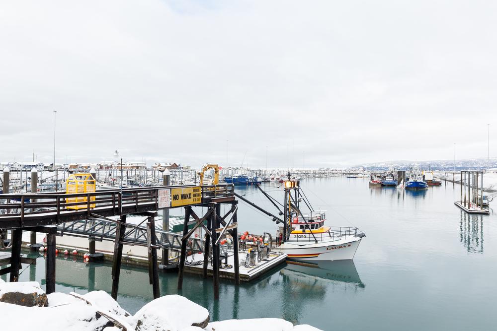 Alaska-0024.jpg