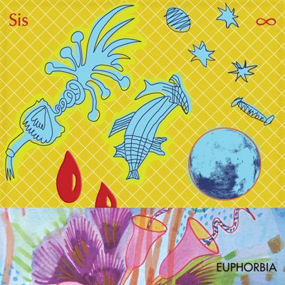 Euphorbia_squareWEB-sml.jpg