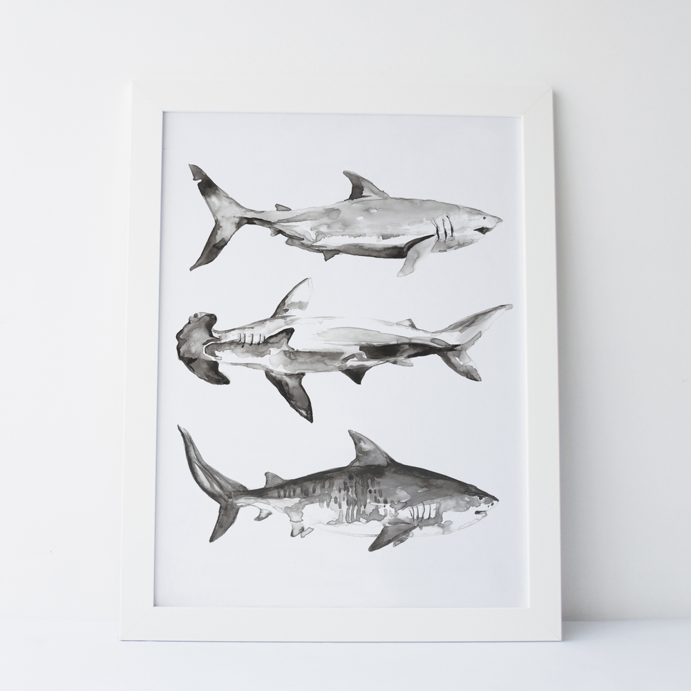 Uncommon Goods: Shark Art Print