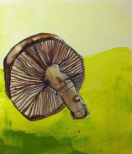 62: Mushrooms -  Sold