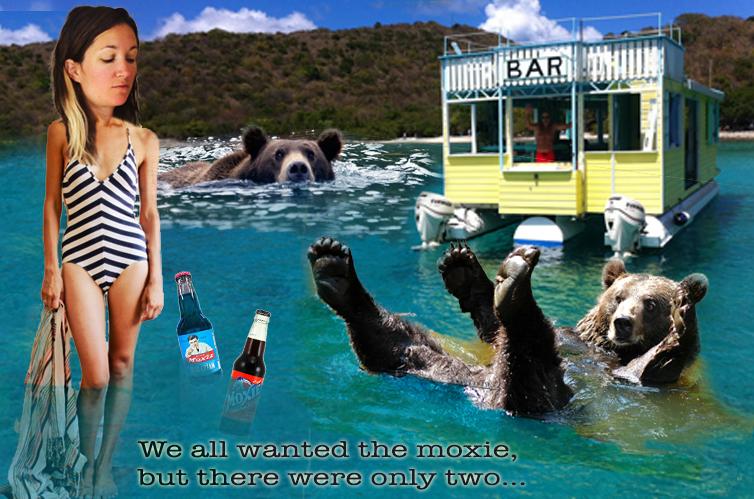 Brown Bear Swimming.jpg