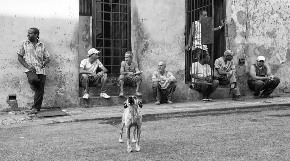 """Palace Guard"" - Havana, Cuba"