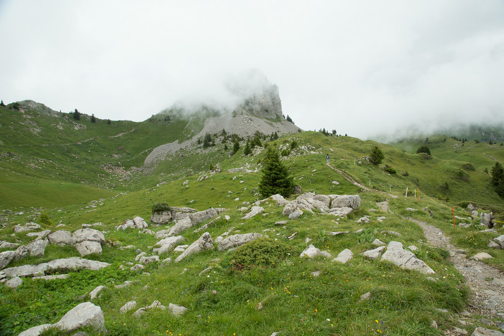 Schynige Platte: ever-changing through those gusts of fog