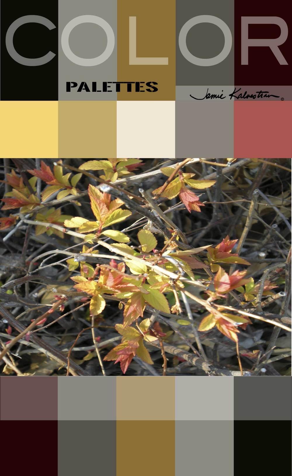 Early-Spring-Color-Palette-J-Kalvestran